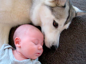 cuando un bebe llega a casa