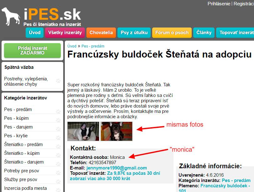 Estafa con anuncios de perros en un portal eslovaco
