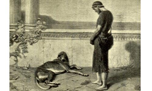 Argos, el perro de Ulises, de raza Saluki, en La Odisea