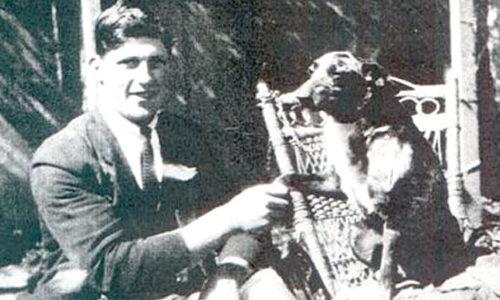 el perro más viejo del mundo, pastor australiano Bluey