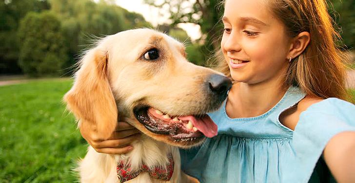 Los perros reaccionan ante las caras sonrientes