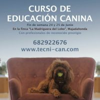 CURSO EDUCACION CANINA